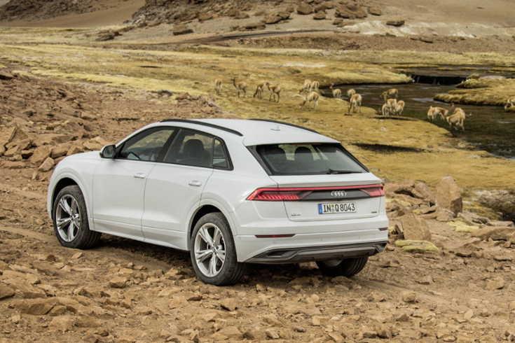 Audi Q8 2018 Heckansicht